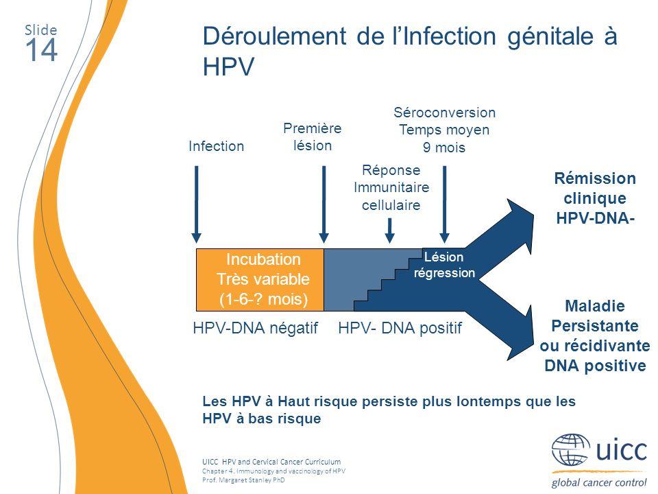 Maladie Persistante ou récidivante DNA positive