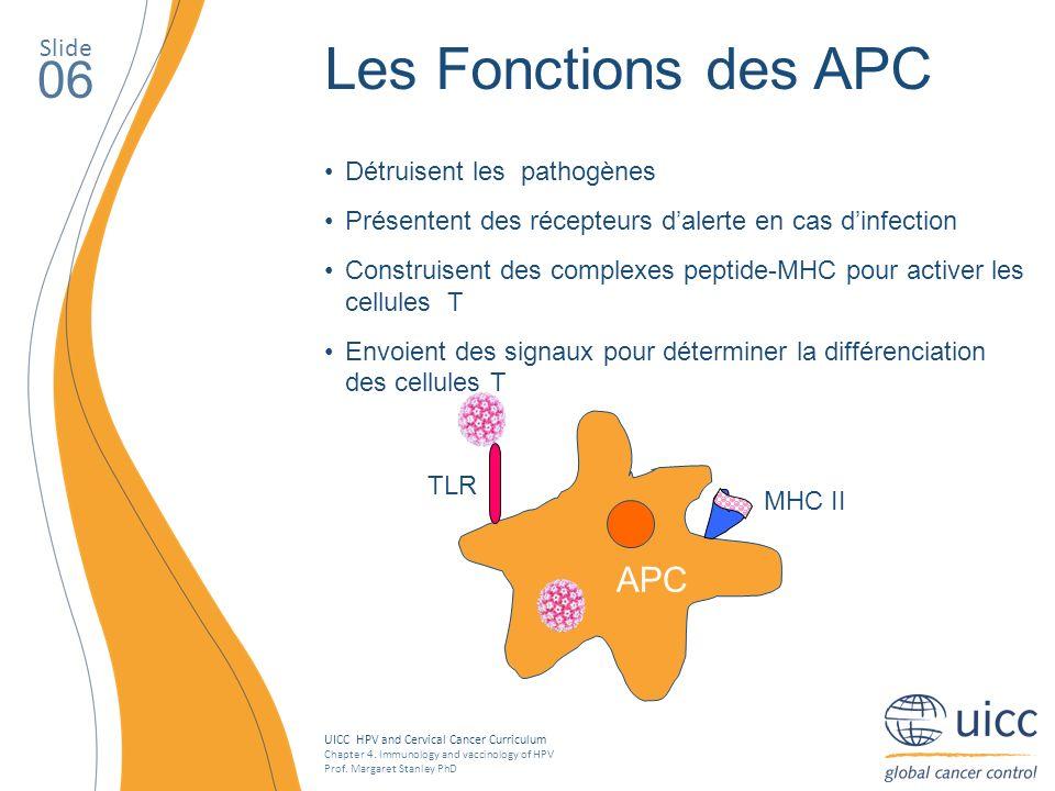 Les Fonctions des APC 06 APC Slide Détruisent les pathogènes