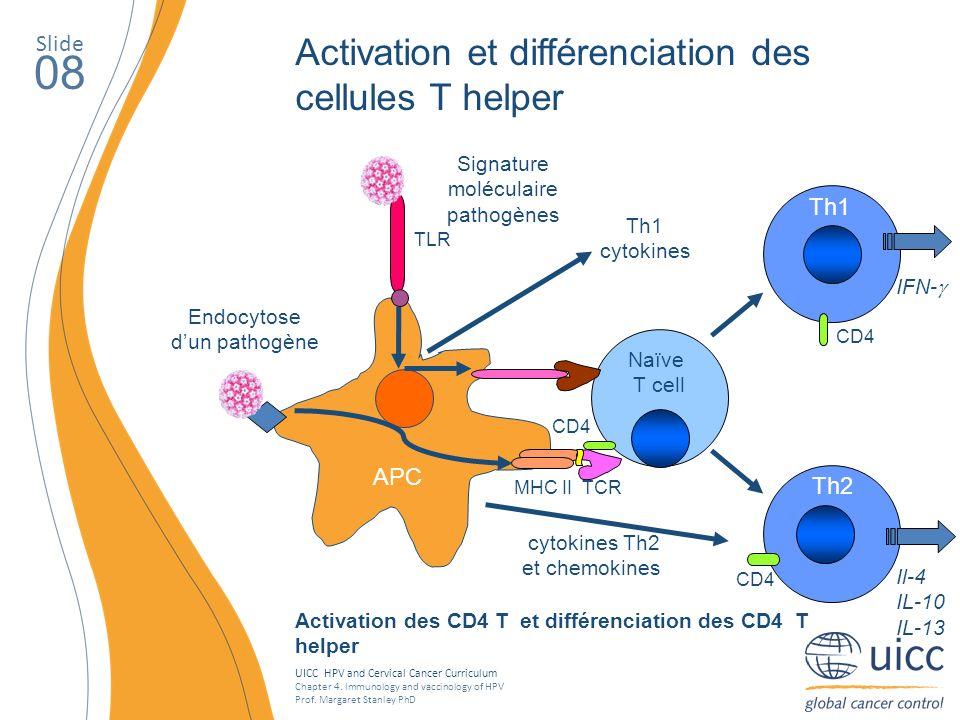 Signature moléculaire pathogènes