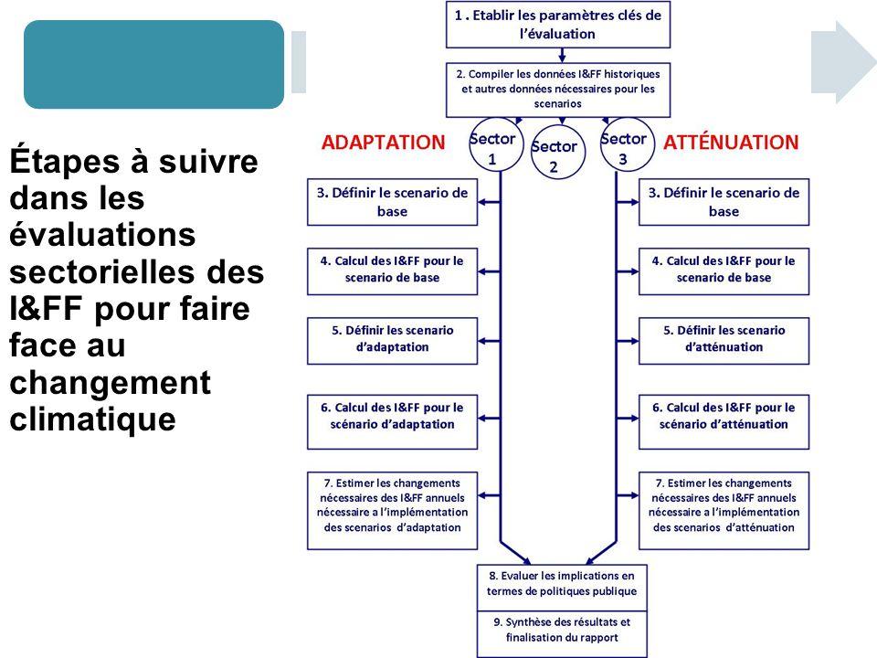 Étapes à suivre dans les évaluations sectorielles des I&FF pour faire face au changement climatique