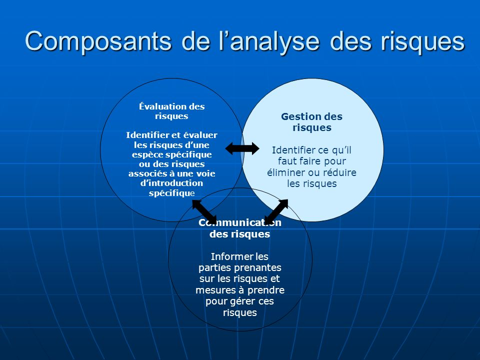 Composants de l'analyse des risques