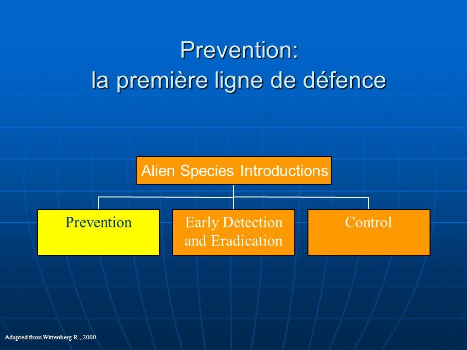 Prevention: la première ligne de défence