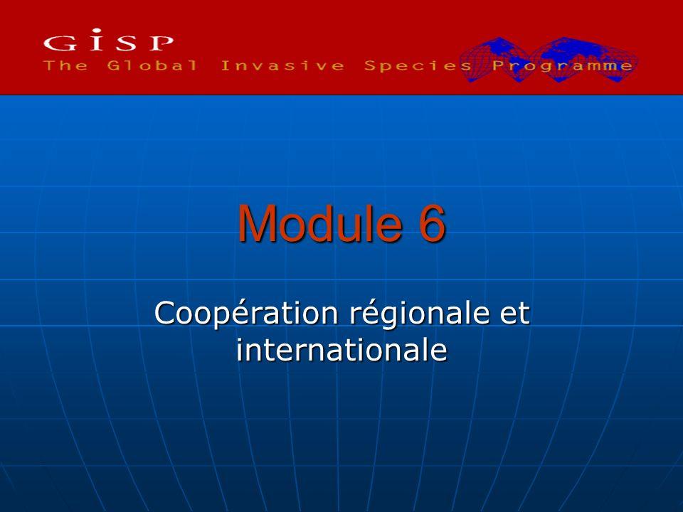 Coopération régionale et internationale