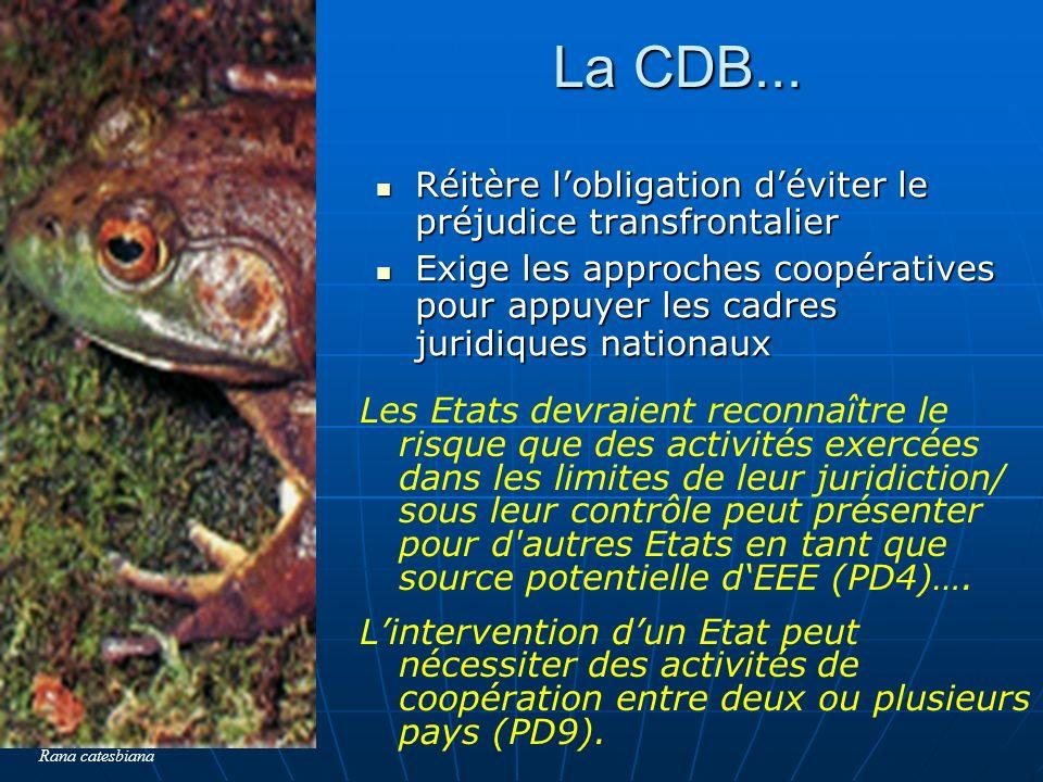 La CDB... Réitère l'obligation d'éviter le préjudice transfrontalier