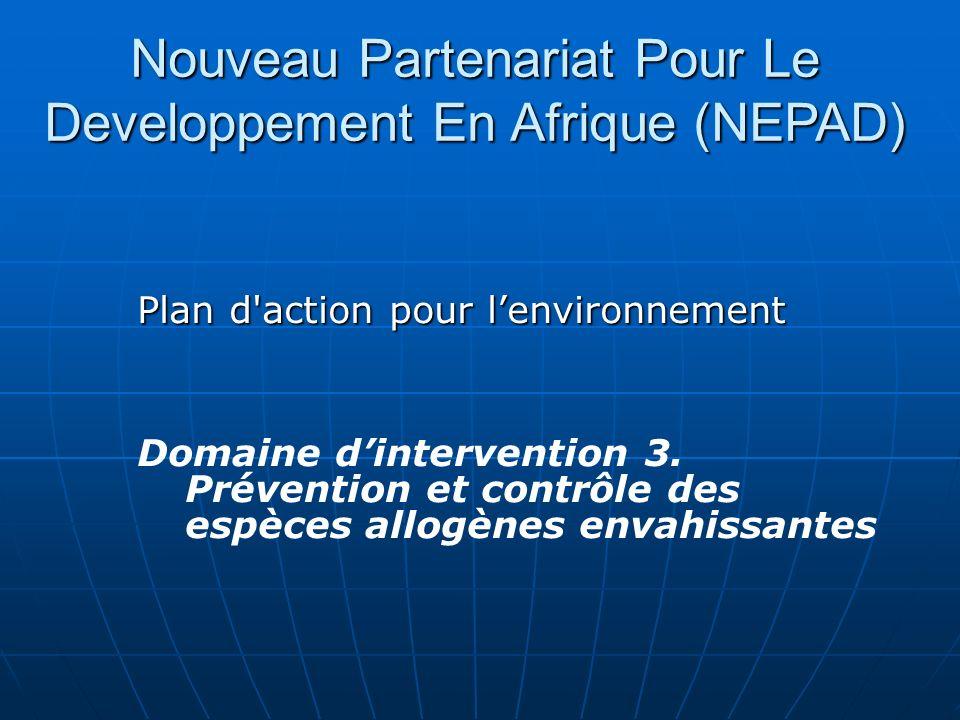 Nouveau Partenariat Pour Le Developpement En Afrique (NEPAD)
