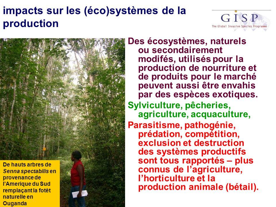 impacts sur les (éco)systèmes de la production