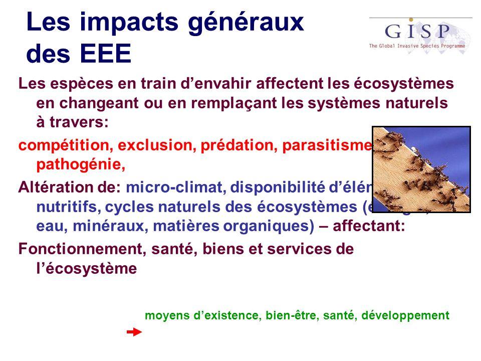 Les impacts généraux des EEE