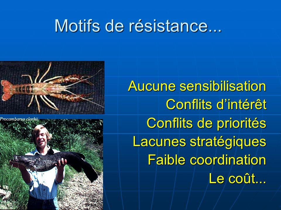 Motifs de résistance... Aucune sensibilisation Conflits d'intérêt