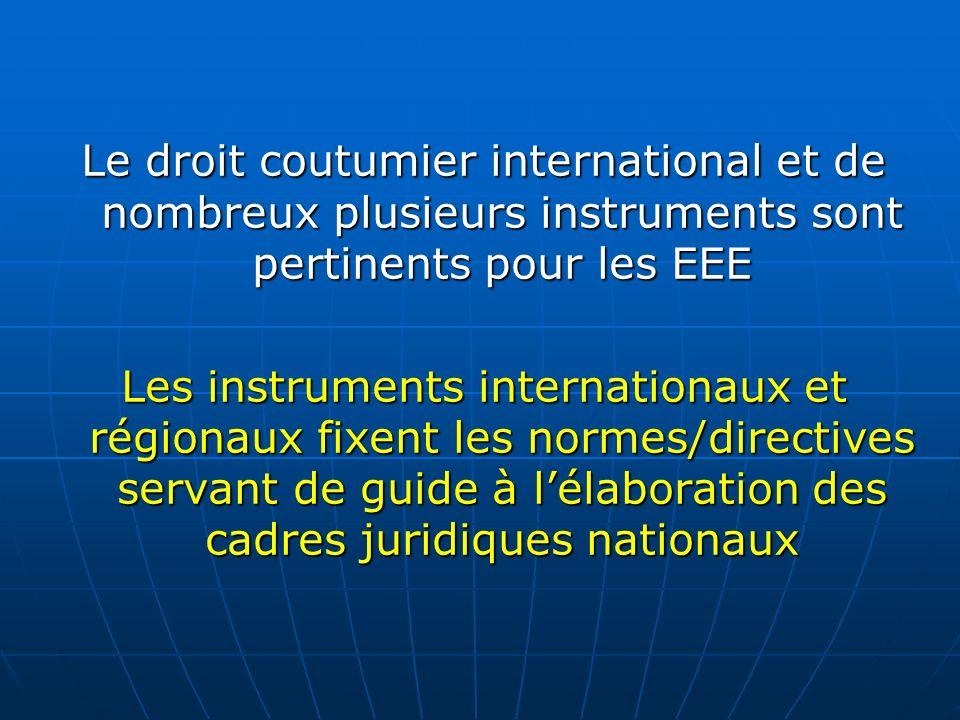 Le droit coutumier international et de nombreux plusieurs instruments sont pertinents pour les EEE