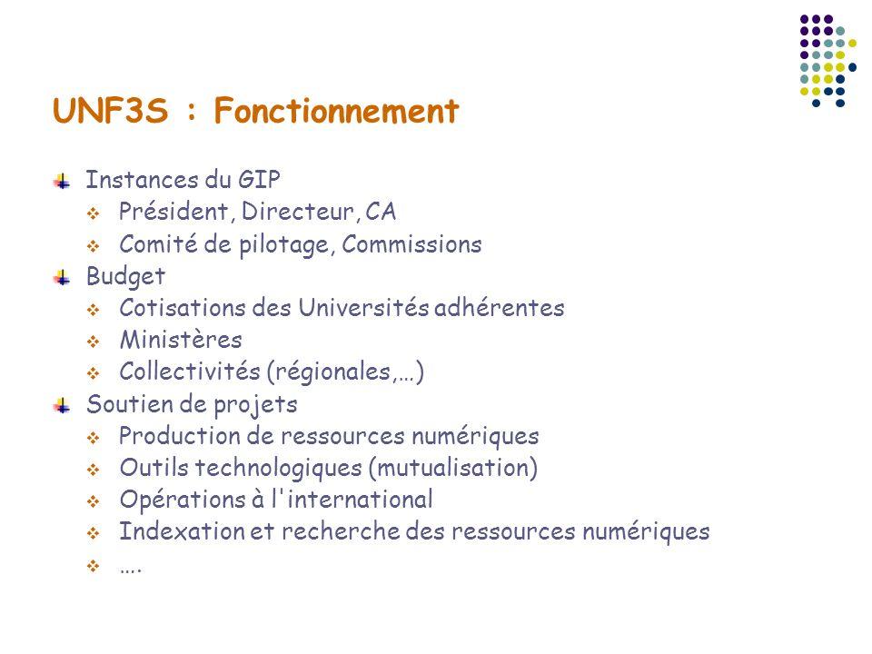 UNF3S : Fonctionnement Instances du GIP Président, Directeur, CA