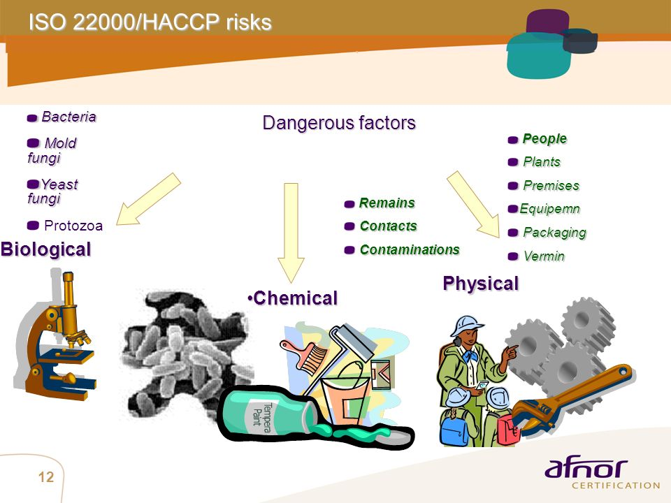 ISO 22000/HACCP risks Biological Physical Chemical Dangerous factors
