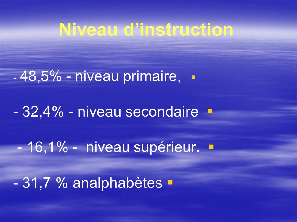 Niveau d'instruction - 32,4% - niveau secondaire