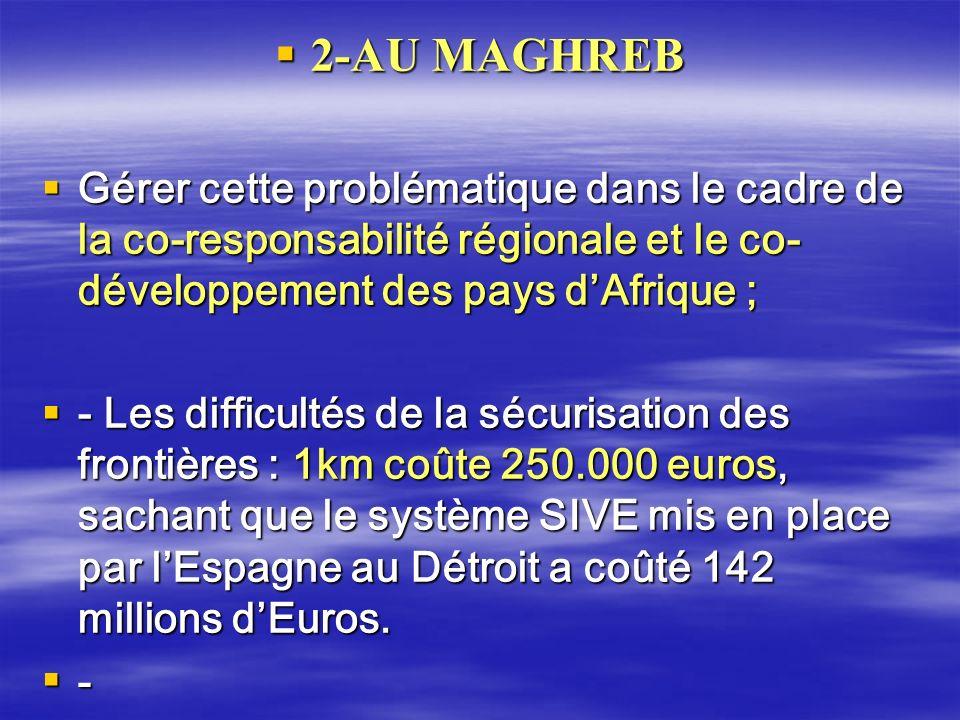 2-AU MAGHREB Gérer cette problématique dans le cadre de la co-responsabilité régionale et le co-développement des pays d'Afrique ;