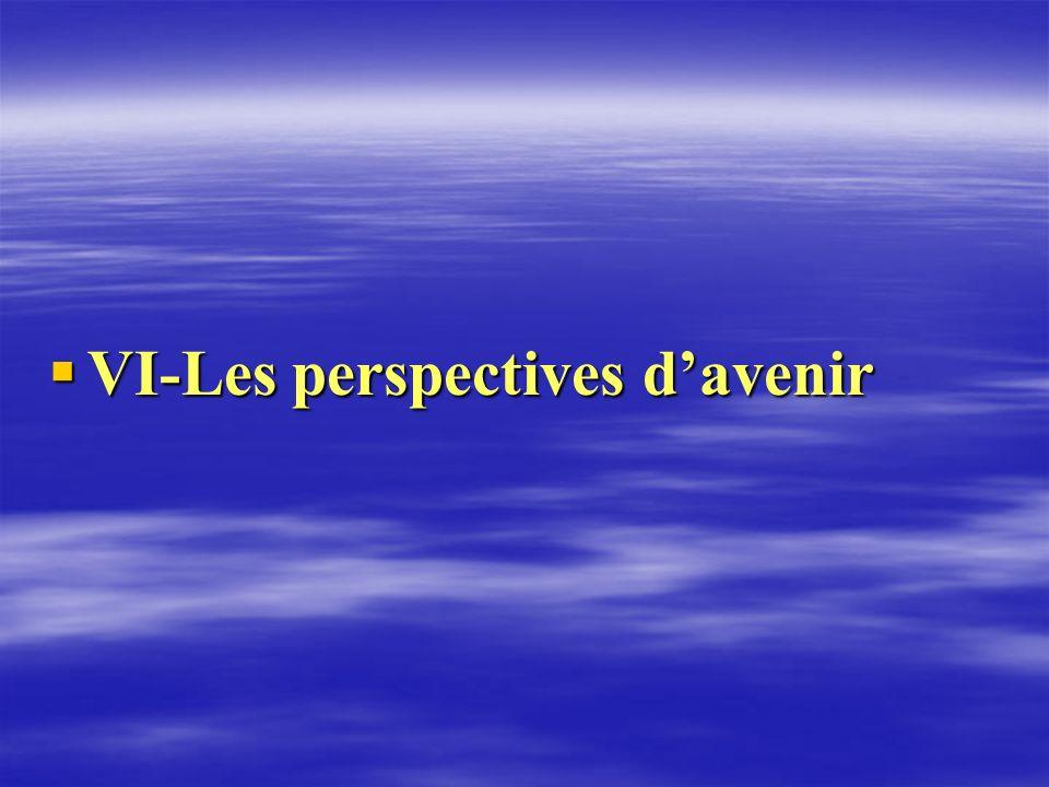 VI-Les perspectives d'avenir