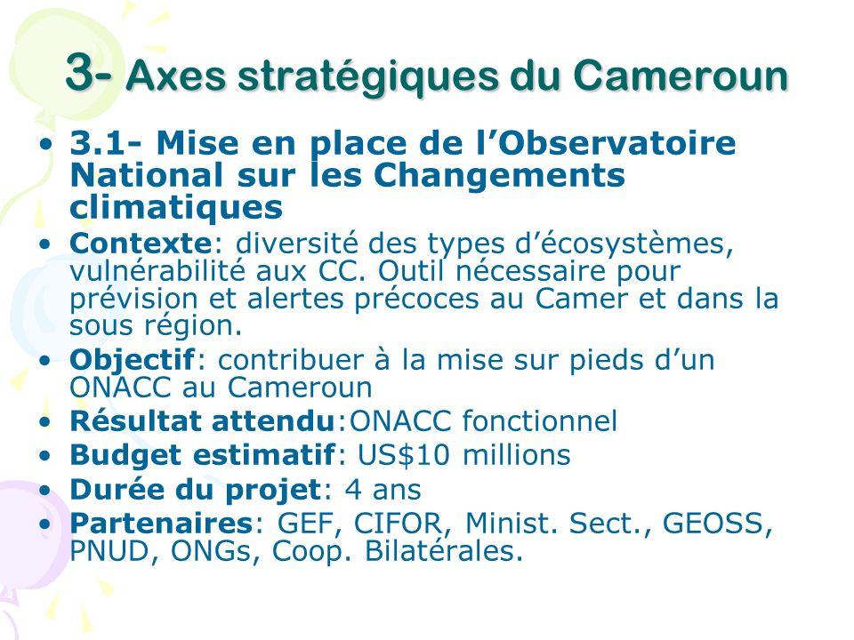 3- Axes stratégiques du Cameroun