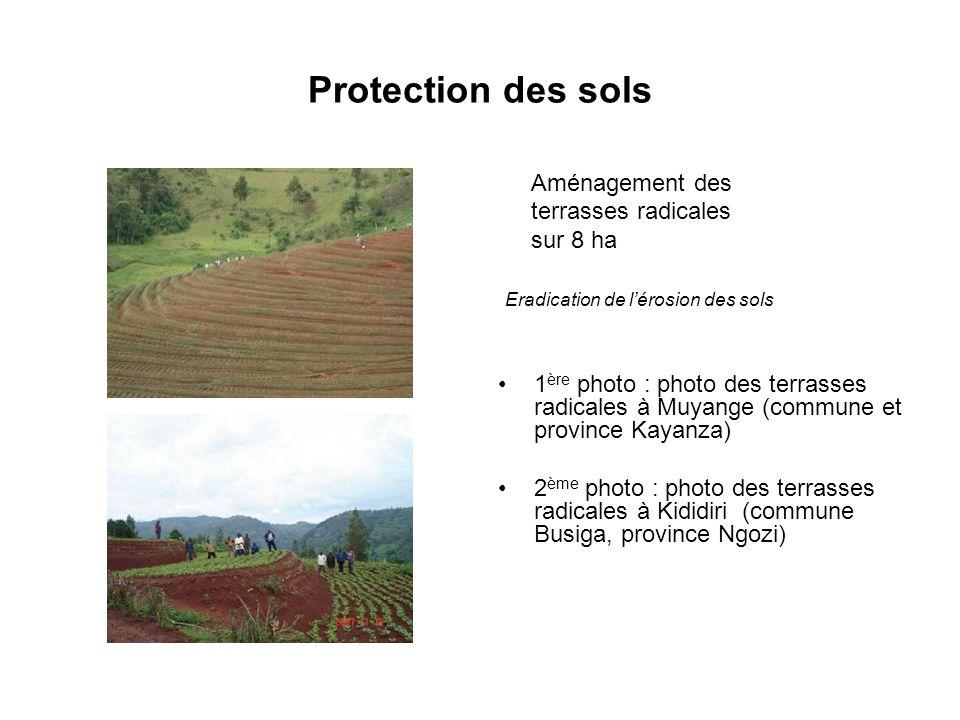 Protection des sols Aménagement des terrasses radicales sur 8 ha