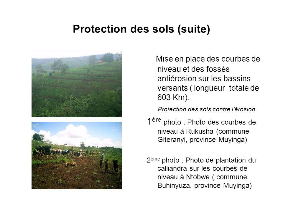 Protection des sols (suite)