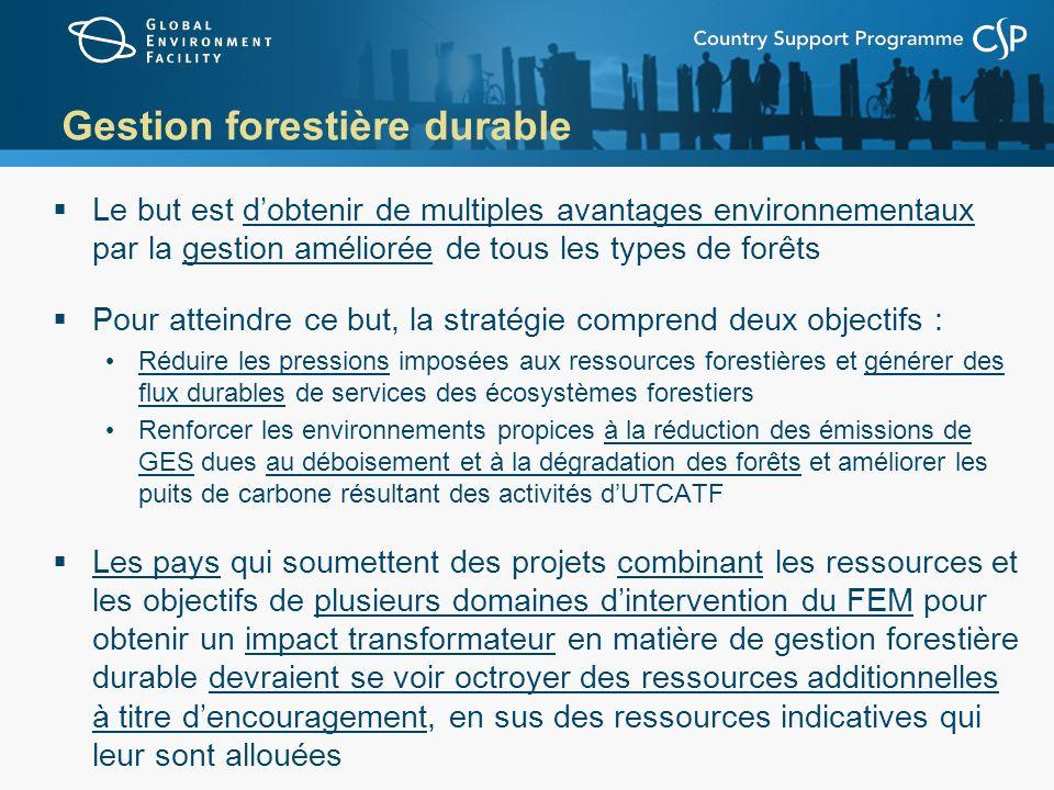 Gestion forestière durable