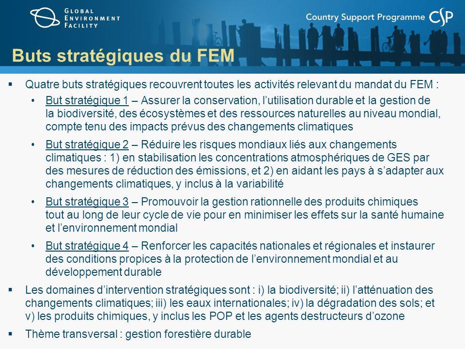 Buts stratégiques du FEM