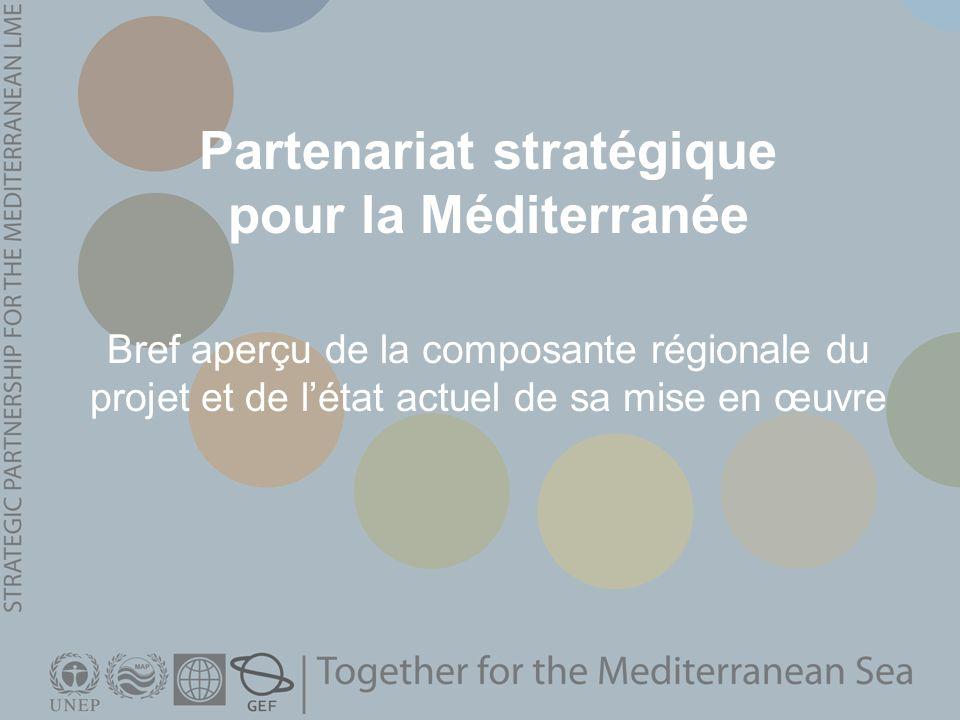 Partenariat stratégique pour la Méditerranée