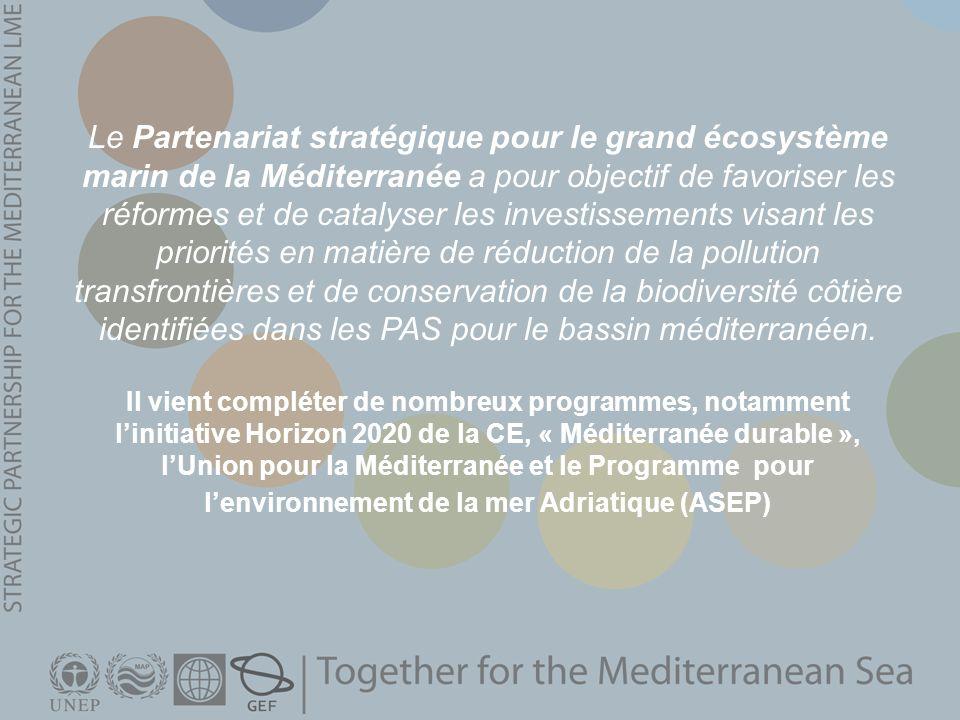 Le Partenariat stratégique pour le grand écosystème marin de la Méditerranée a pour objectif de favoriser les réformes et de catalyser les investissements visant les priorités en matière de réduction de la pollution transfrontières et de conservation de la biodiversité côtière identifiées dans les PAS pour le bassin méditerranéen.