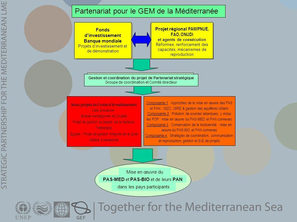 Partenariat pour le GEM de la Méditerranée