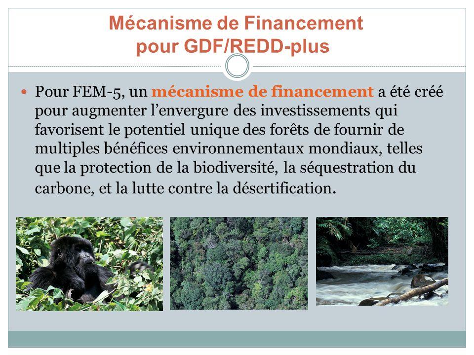 Mécanisme de Financement pour GDF/REDD-plus