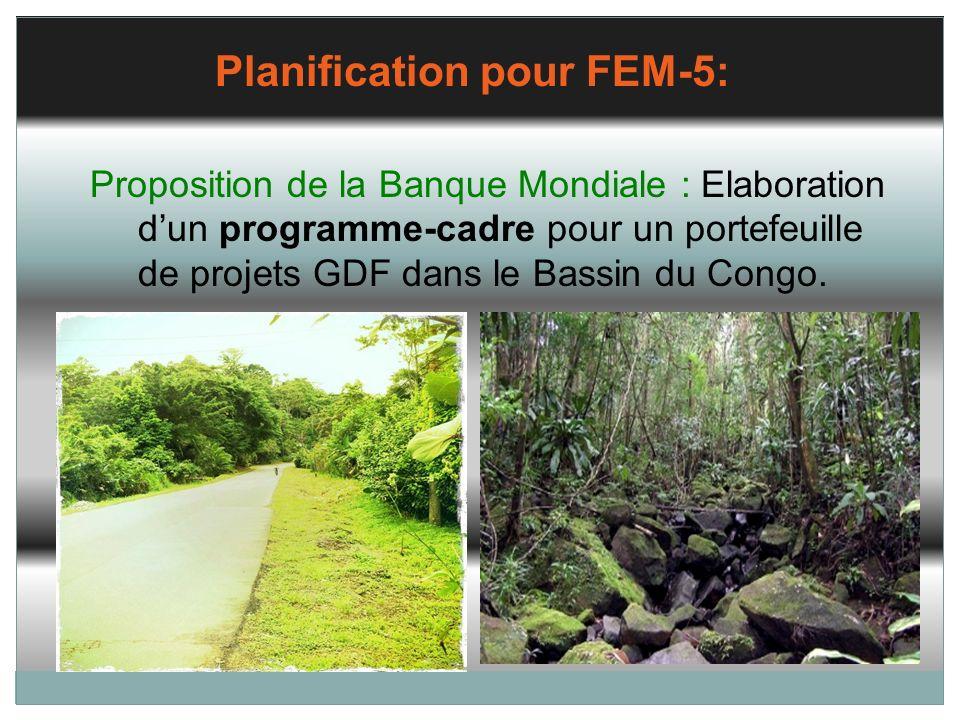 Planification pour FEM-5: