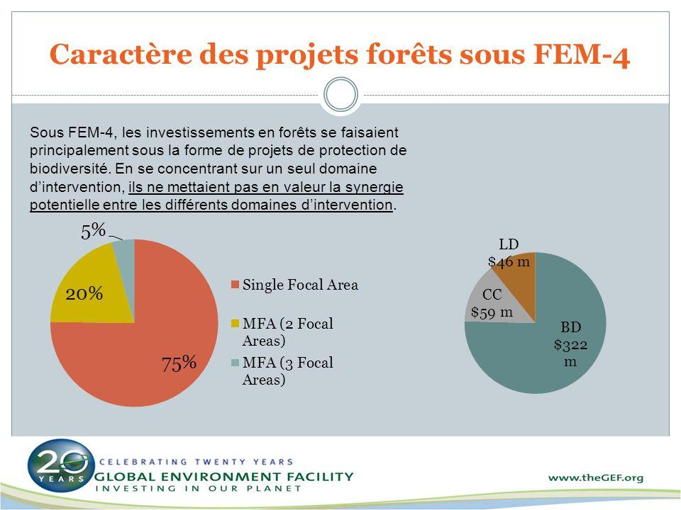 Caractère des projets forêts sous FEM-4