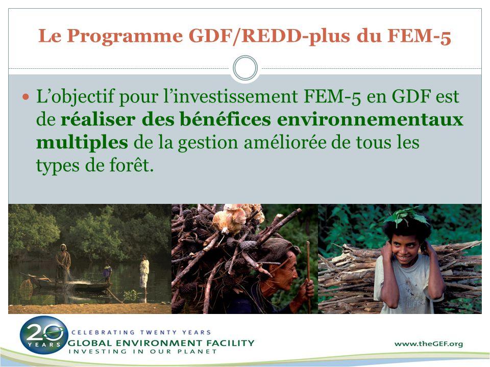 Le Programme GDF/REDD-plus du FEM-5