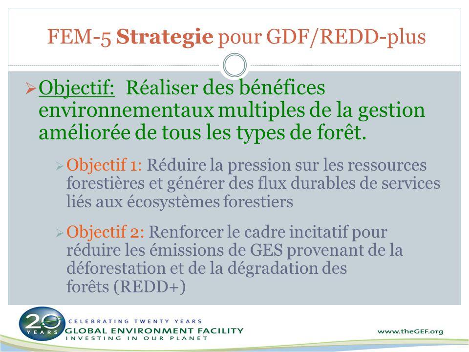 FEM-5 Strategie pour GDF/REDD-plus
