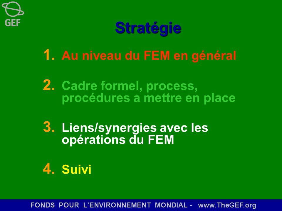 Stratégie Au niveau du FEM en général