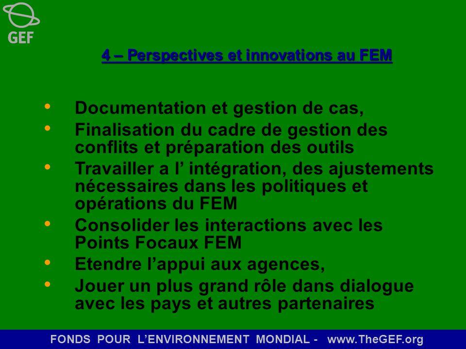 4 – Perspectives et innovations au FEM