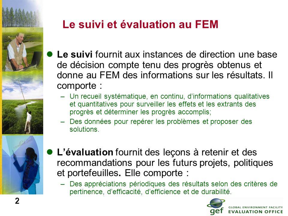 Le suivi et évaluation au FEM