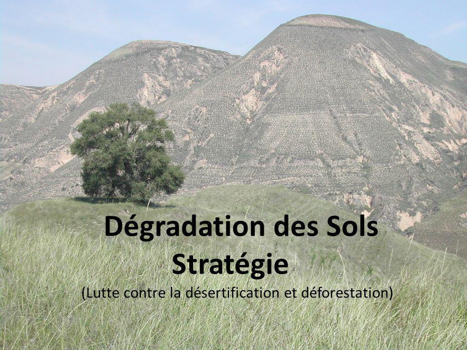 Dégradation des Sols Stratégie (Lutte contre la désertification et déforestation)
