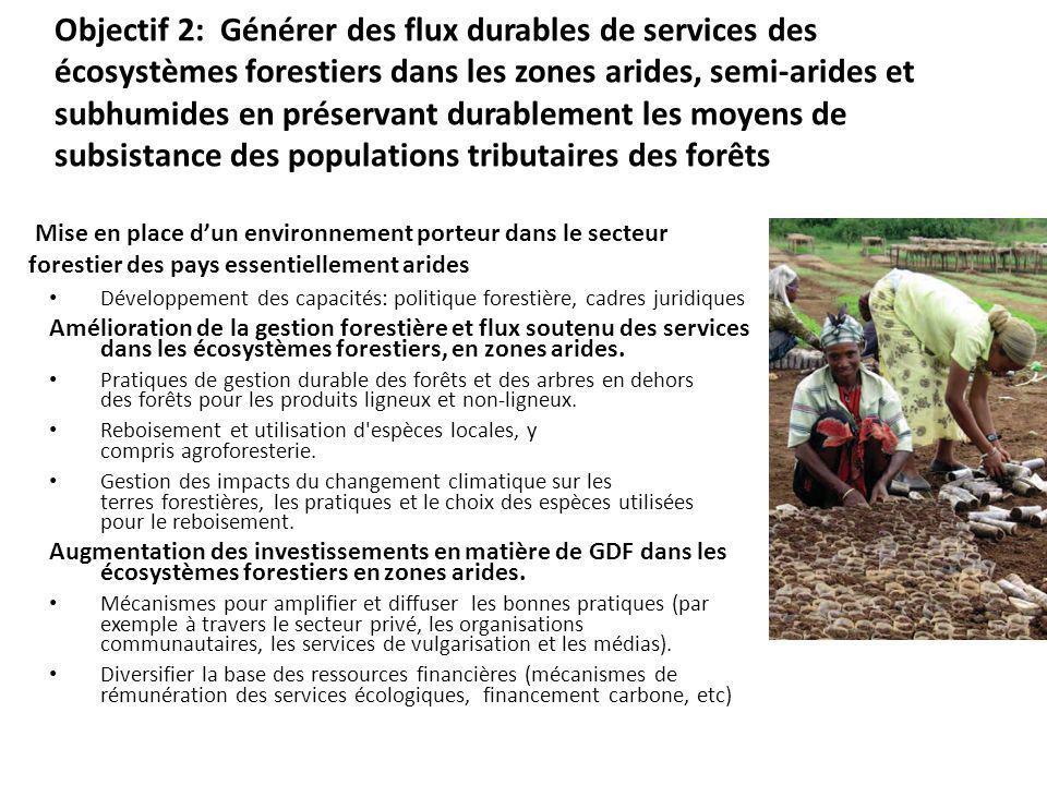 Objectif 2: Générer des flux durables de services des écosystèmes forestiers dans les zones arides, semi-arides et subhumides en préservant durablement les moyens de subsistance des populations tributaires des forêts