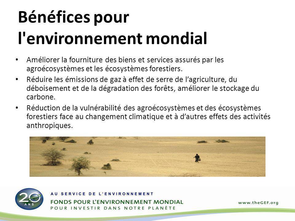 Bénéfices pour l environnement mondial