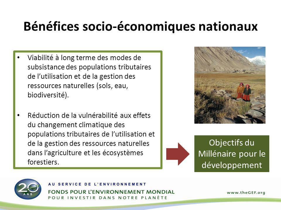 Bénéfices socio-économiques nationaux