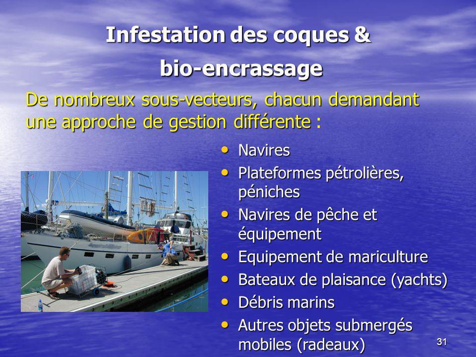 Infestation des coques & bio-encrassage