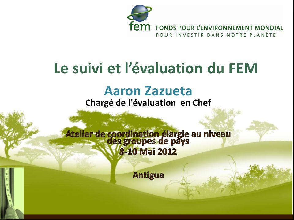 Le suivi et l'évaluation du FEM