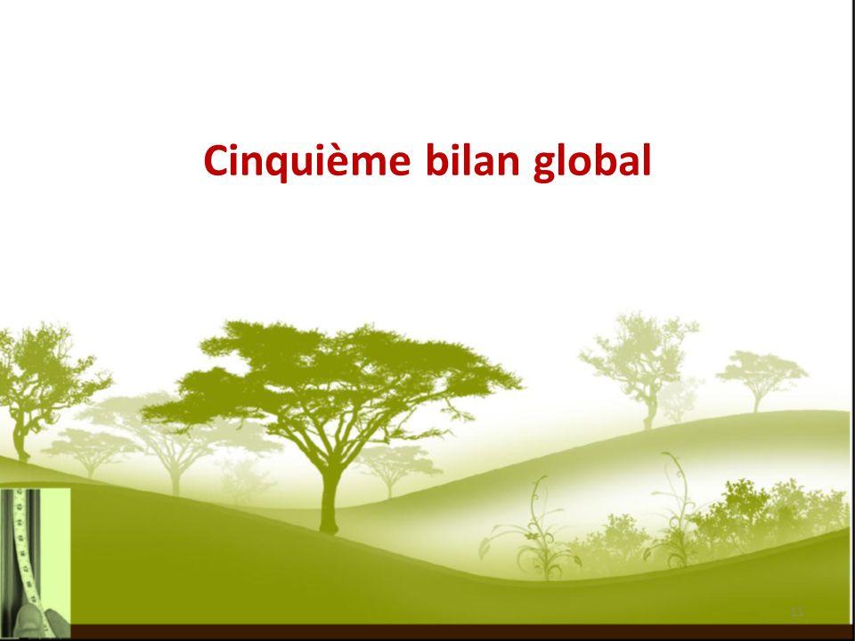 Cinquième bilan global