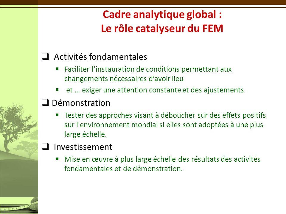 Cadre analytique global : Le rôle catalyseur du FEM