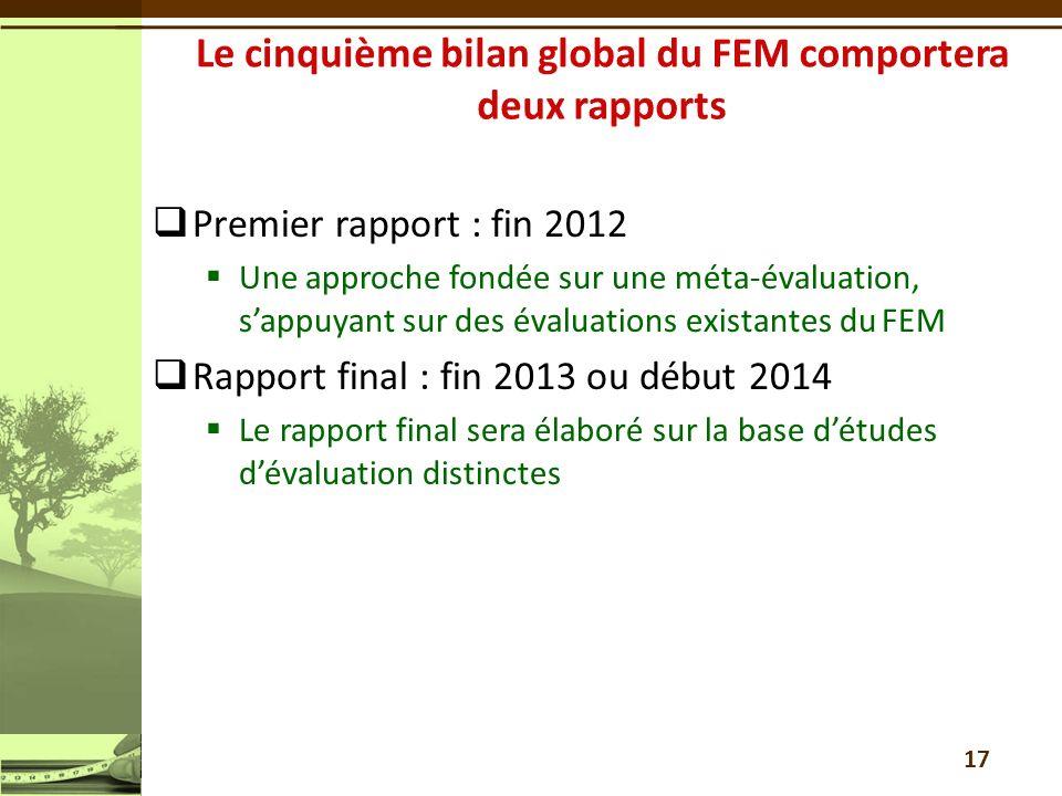 Le cinquième bilan global du FEM comportera deux rapports
