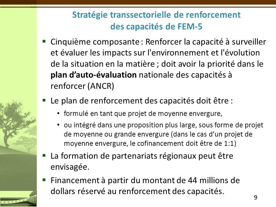 Stratégie transsectorielle de renforcement des capacités de FEM-5