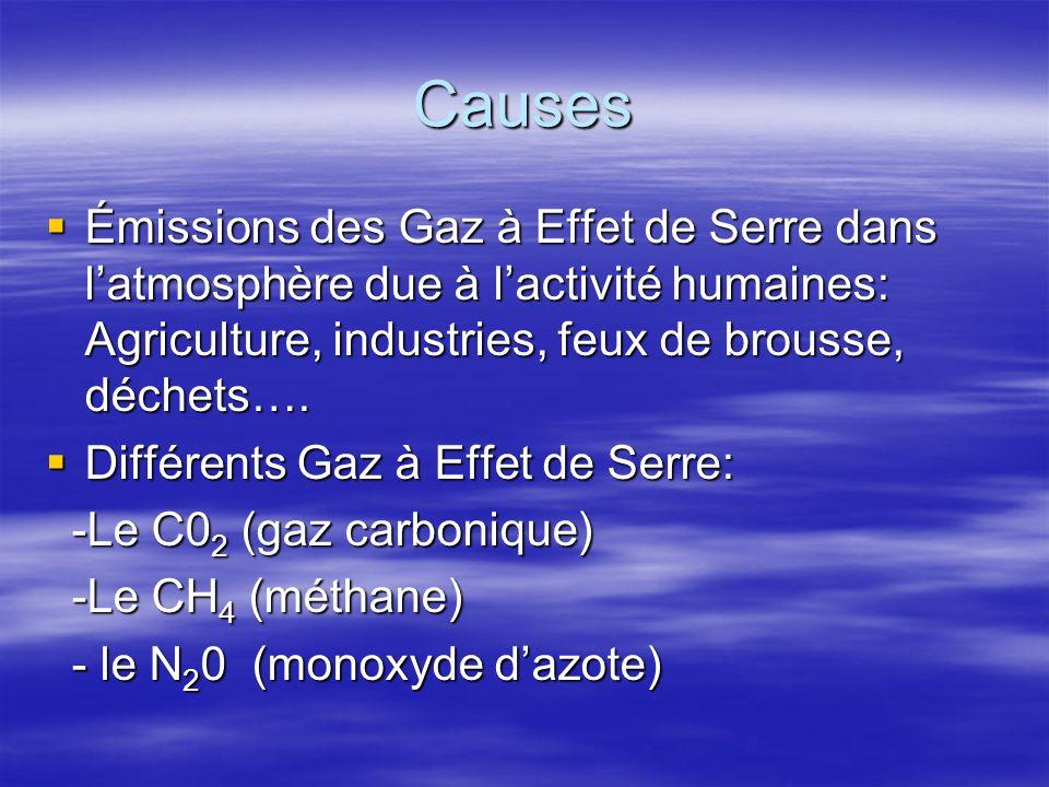 Causes Émissions des Gaz à Effet de Serre dans l'atmosphère due à l'activité humaines: Agriculture, industries, feux de brousse, déchets….