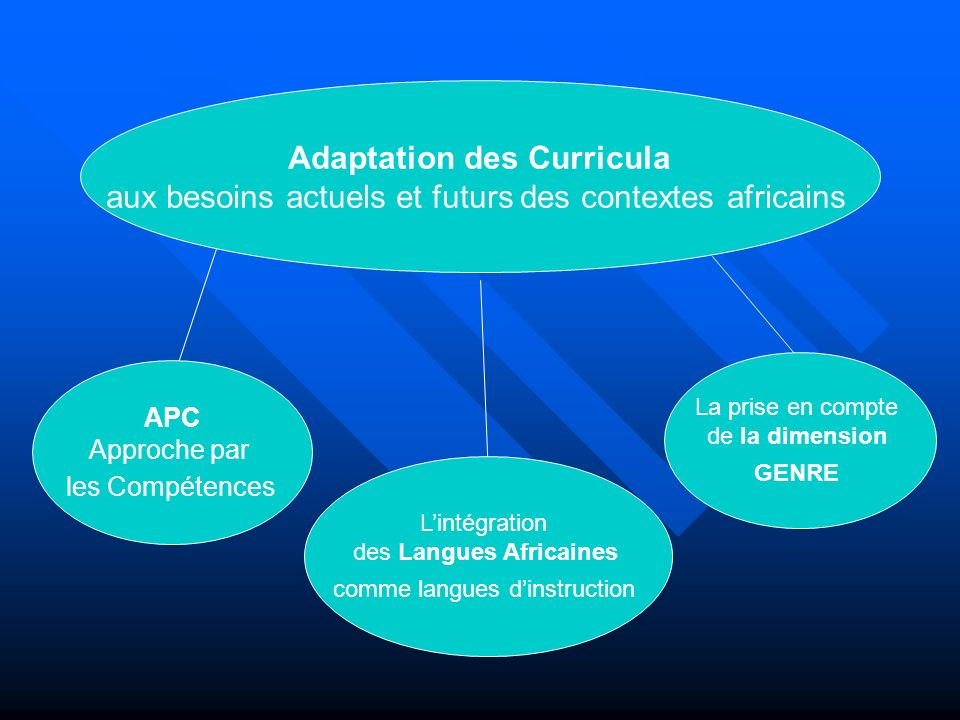 Adaptation des Curricula