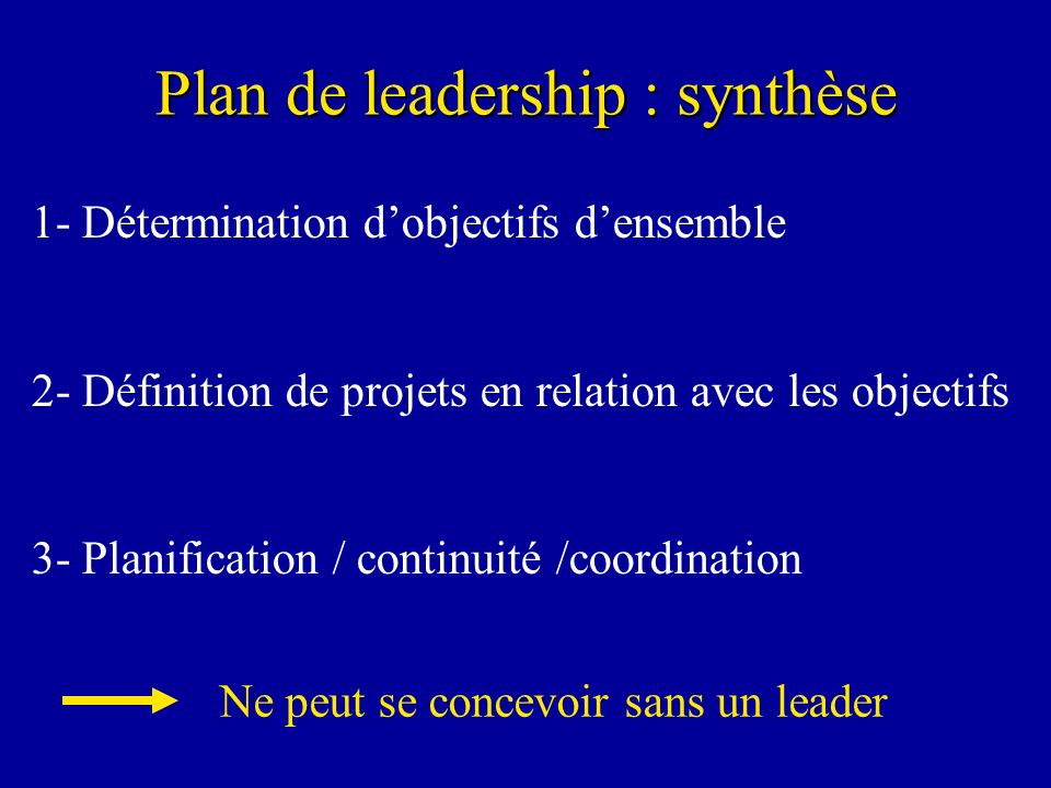 Plan de leadership : synthèse