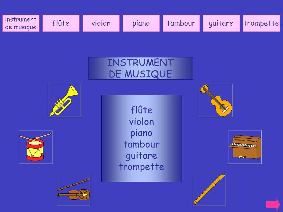 INSTRUMENT DE MUSIQUE flûte violon piano tambour guitare trompette