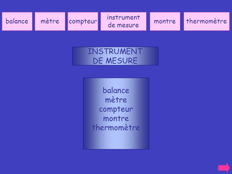 INSTRUMENT DE MESURE balance mètre compteur montre thermomètre balance