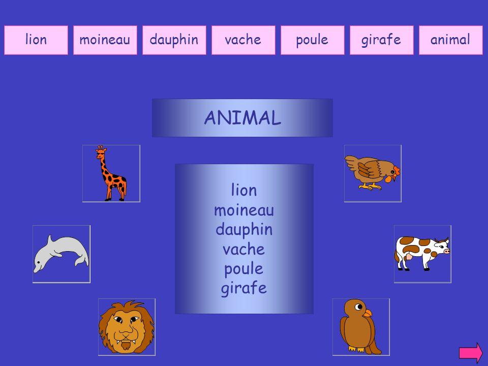ANIMAL lion moineau dauphin vache poule girafe lion moineau dauphin